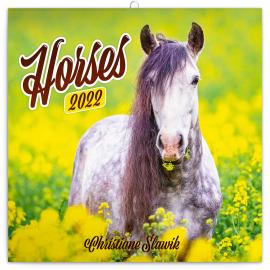Poznámkový kalendář Koně – Christiane Slawik 2022, 30 × 30 cm
